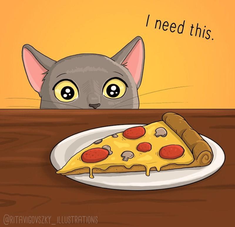 Cat - I need this. @RITAVIGOVSZKY_ILLUSTRATIONS