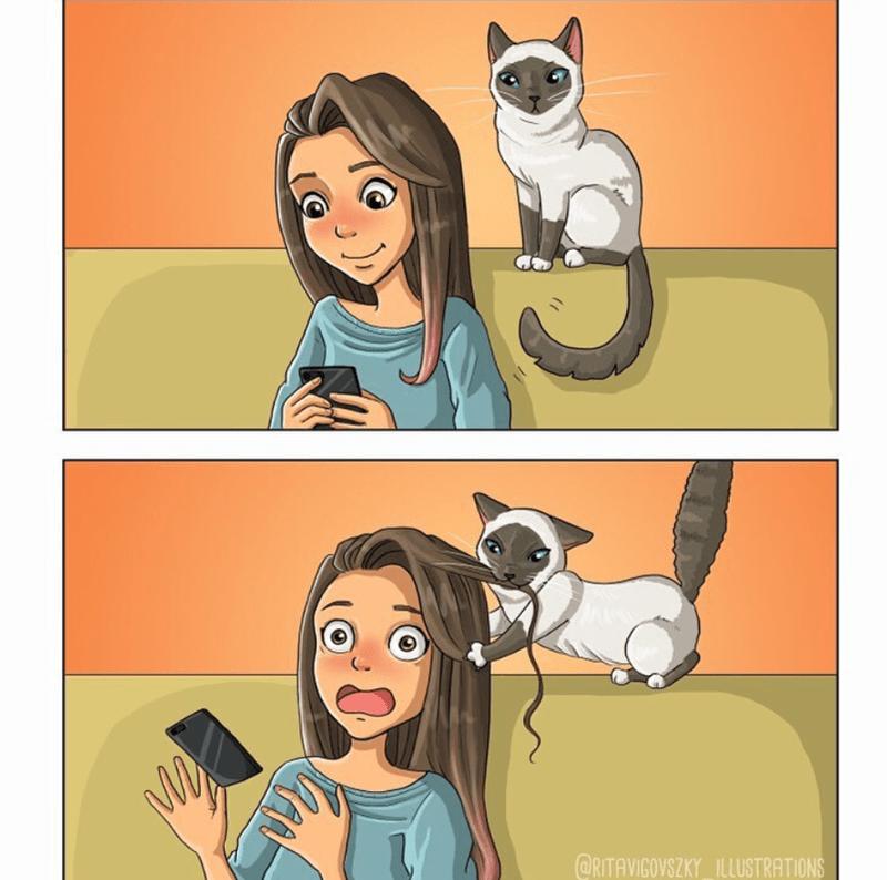 Cartoon - @RITAVIGOVSZKY_ILLUSTRATIONS
