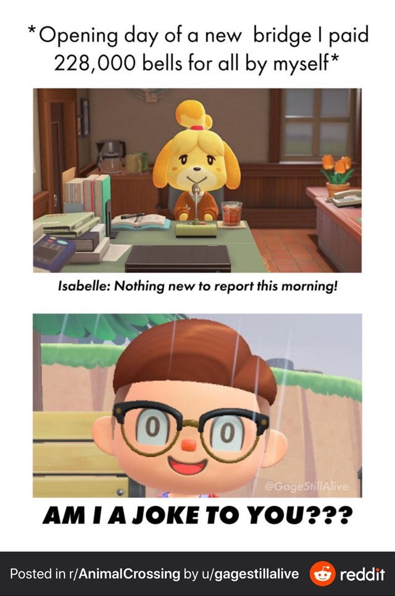 Cartoon - *Opening day of a new bridge I paid 228,000 bells for all by myself* Isabelle: Nothing new to report this morning! (0) @GageStillAlive AM I A JOKE TO YOU??? Posted in r/AnimalCrossing by u/gagestillalive ở reddit