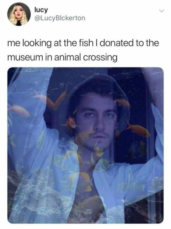 Text - lucy @LucyBlckerton me looking at the fish I donated to the museum in animal crossing