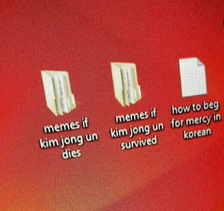 Text - memes if kim jong un dies memes if how to beg kim jong un for mercy in korean survived