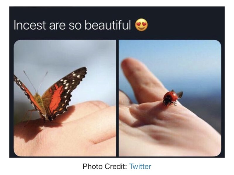 Butterfly - Incest are so beautiful Photo Credit: Twitter
