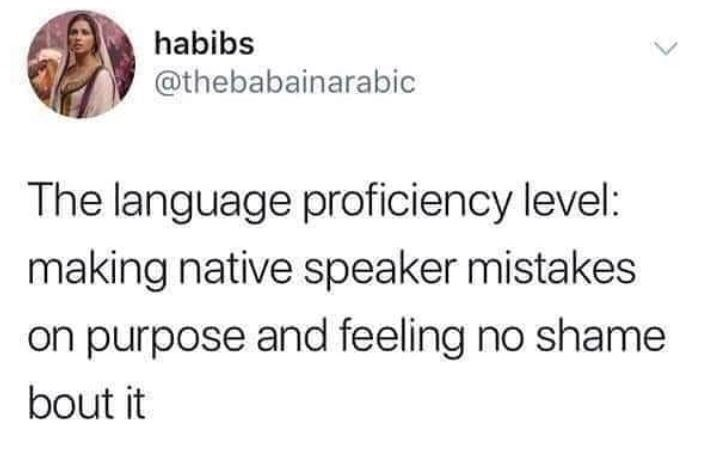 Text - habibs @thebabainarabic The language proficiency level: making native speaker mistakes on purpose and feeling no shame bout it