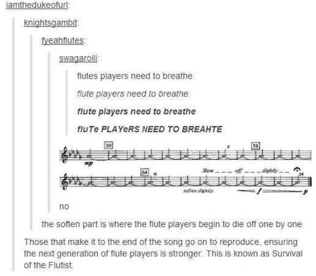 Text - iamthedukeofur: knightsgambit fyeahflutes: swagarolli fiutes players need to breathe flute players need to breathe flute players need to breathe fluTe PLAYERS NEED TO BREAHTE 50 Slow- eff --- slighty. soften slightly no the soften part is where the flute players begin to die off one by one Those that make it to the end of the song go on to reproduce, ensuring the next generation of flute players is stronger. This is known as Survival of the Flutist.