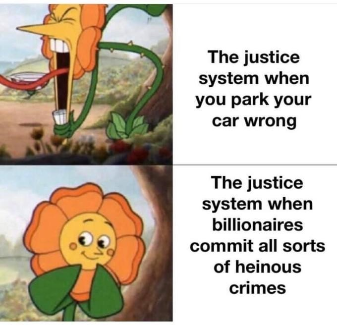 Organism - The justice system when you park your car wrong The justice system when billionaires commit all sorts of heinous crimes