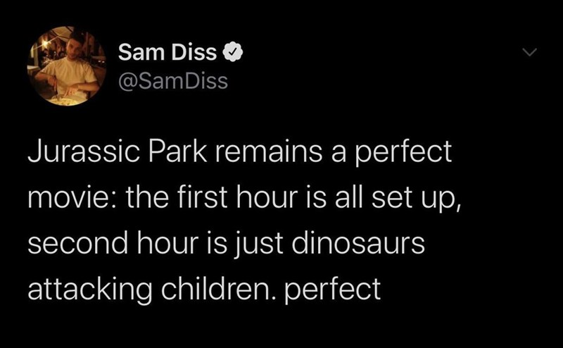 Text - Sam Diss @SamDiss Jurassic Park remains a perfect movie: the first hour is all set up, second hour is just dinosaurs attacking children. perfect