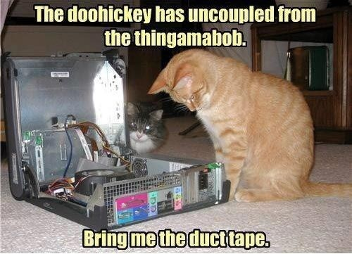 Cat - The doohickey has uncoupled from the thingamabob. Bring me the ducttape.