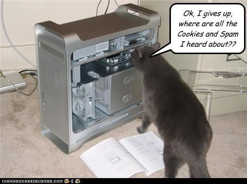 Cat - Ok, I gives up, where are all the Cookies and Spam I heard about?? G5 G5 ICANHASCHEEZBURGER.COM E HT