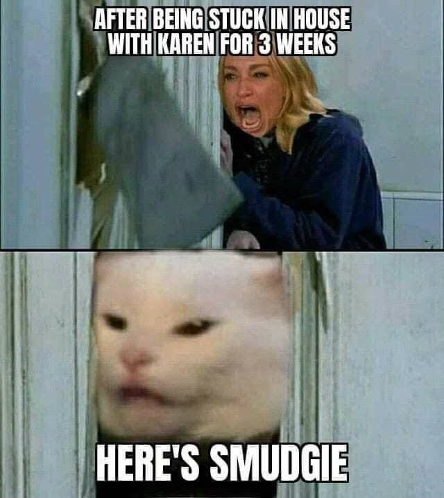 woman yelling at a cat meme the shining here's johnny scene AFTER BEING STUCK IN HOUSE WITH KAREN FOR 3 WEEKS Here's Smudgie