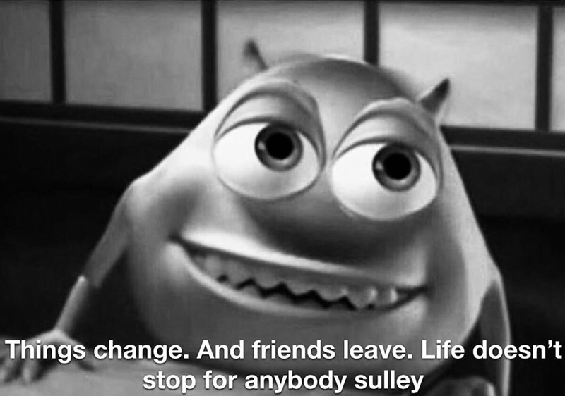 Facial expression - Things change. And friends leave. Life doesn't stop for anybody sulley