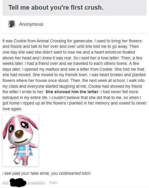 Text - Text - Tell me about you're first crush. Anonymous It was Cookie from Animal Crossing for gamecube. I used to bring her flowers and fossils and talk to her over and over until she told me to go away. Then one day she said she didn't want to lose me and a heart emoticon floated above her head and I knew it was real. So I sent her a love letter. Then, a few weeks later, I had a friend over and we traveled to each others towns. A few days later, I opened my mailbox and saw a letter from Cook