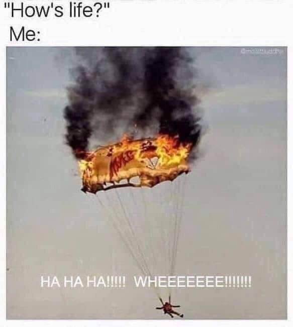 """Text - """"How's life?"""" Me: НА НА НА!!!!WHEEEEEEE!!!!!"""