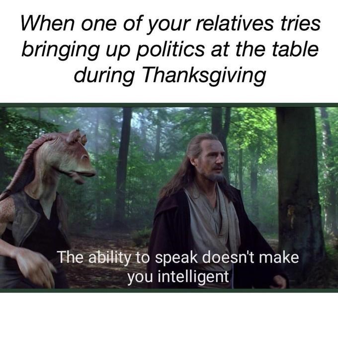 Text - When one of your relatives tries bringing up politics at the table during Thanksgiving The ability to speak doesn't make you intelligent