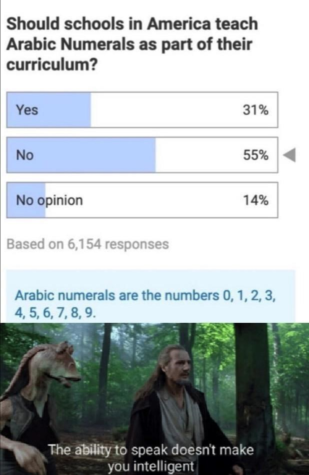Adaptation - Should schools in America teach Arabic Numerals as part of their curriculum? Yes 31% No 55% No opinion 14% Based on 6,154 responses Arabic numerals are the numbers 0, 1, 2, 3, 4, 5, 6, 7, 8, 9. The ability to speak doesn't make you intelligent