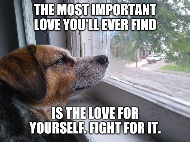 Dog - THE MOST IMPORTANT LOVE YOU'LL EVER FIND IS THE LOVE FOR YOURSELF, FIGHT FOR IT.