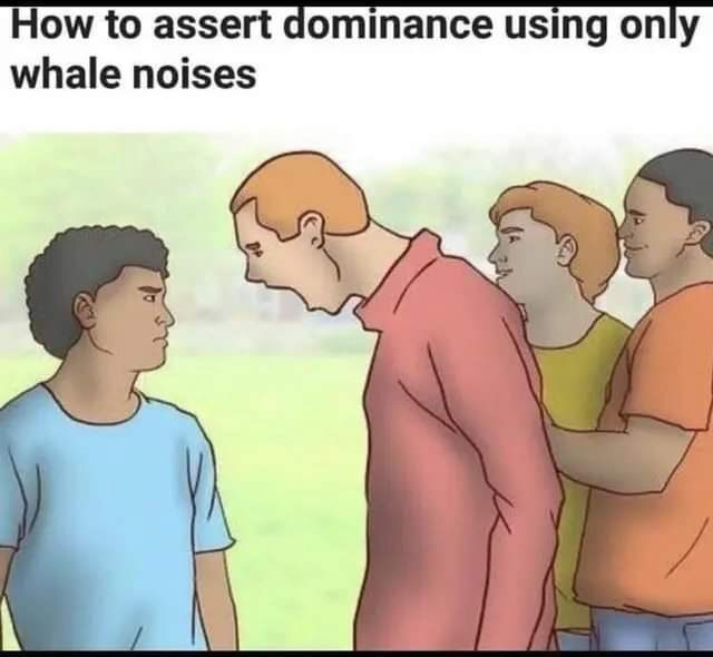 Cartoon - How to assert dominance using only whale noises