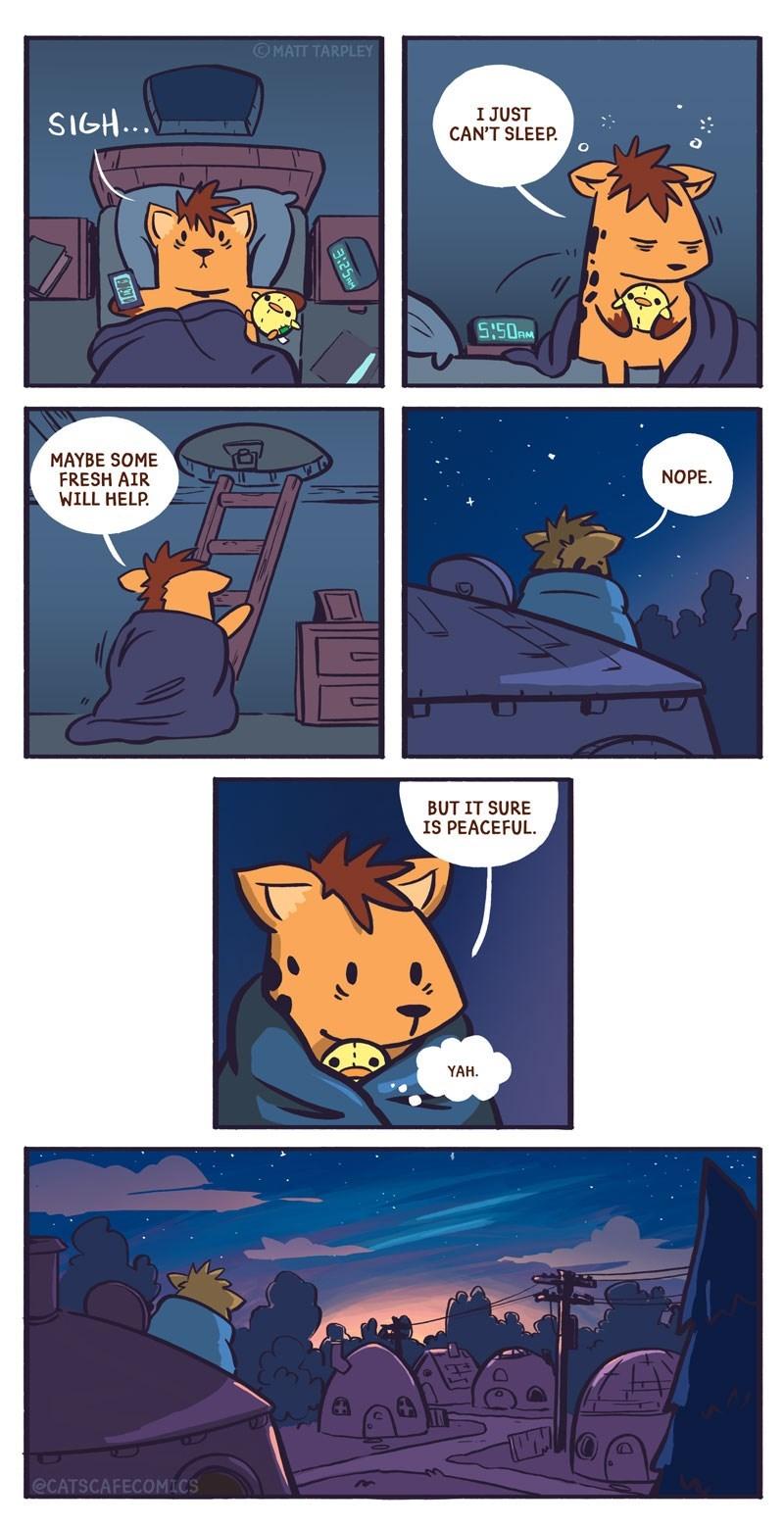 Comics - OMATT TARPLEY SIGH... I JUST CAN'T SLEEP. S:50AM MAYBE SOME FRESH AIR WILL HELP. NOPE. BUT IT SURE IS PEACEFUL. YAH. @CATSCAFECOMICS
