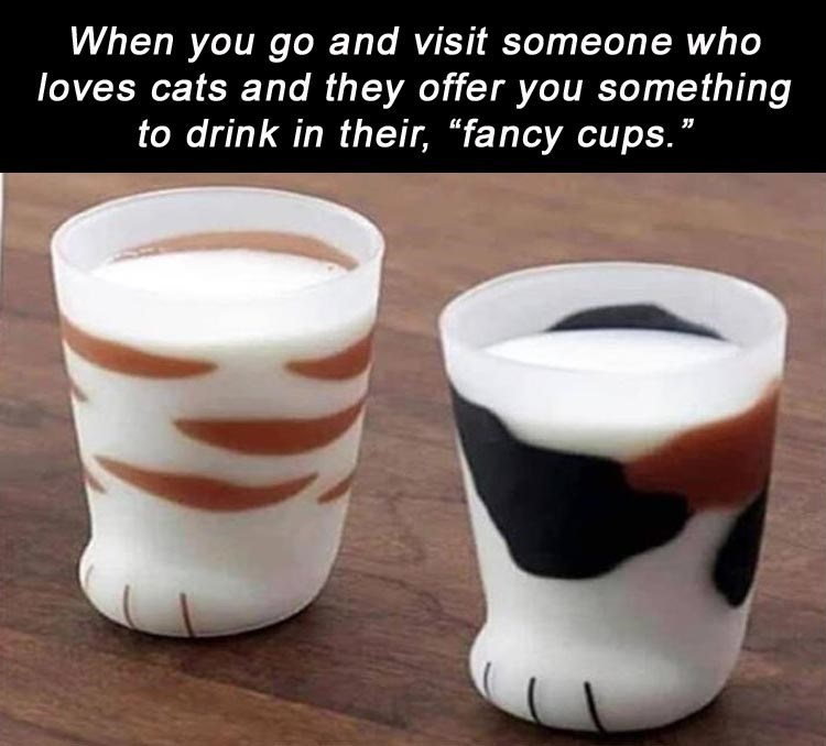 """When you go and visit someone who loves cats and they offer you something to drink in their, """"fancy cups."""" drinking cups shaped like cat feet"""