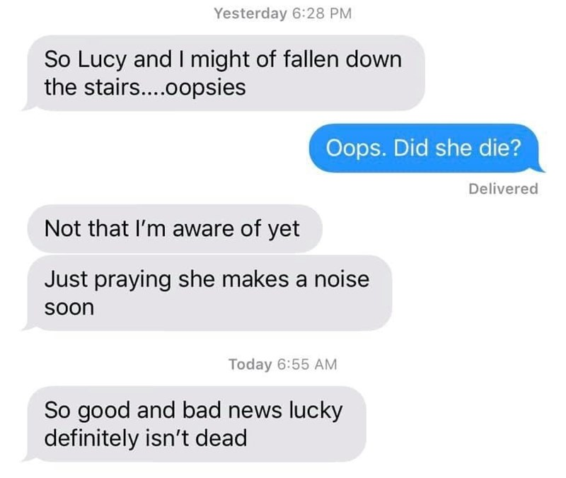 Text - Yesterday 6:28 PM So Lucy and I might of fallen down the stairs....0opsies Oops. Did she die? Delivered Not that l'm aware of yet Just praying she makes a noise Soon Today 6:55 AM So good and bad news lucky definitely isn't dead