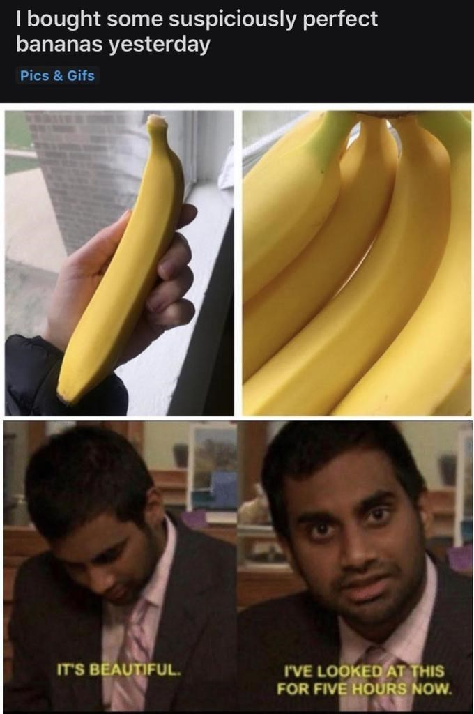 Banana family - I bought some suspiciously perfect bananas yesterday Pics & Gifs IT'S BEAUTIFUL I'VE LOOKED AT THIS FOR FIVE HOURS NOW.