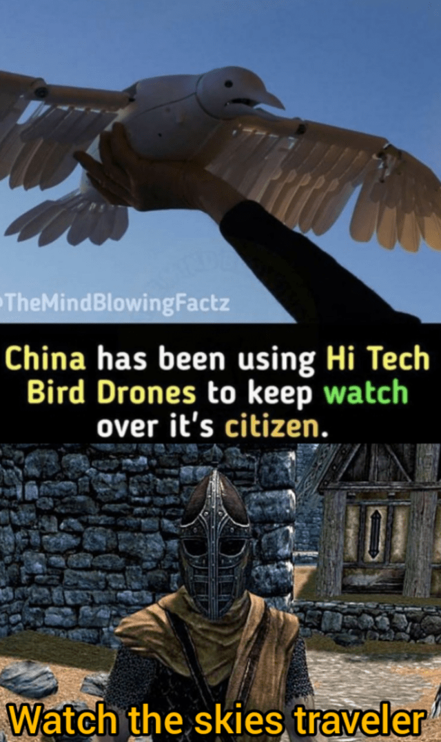 Wing - TheMindBlowingFactz China has been using Hi Tech Bird Drones to keep watch over it's citizen. Watch the skies traveler