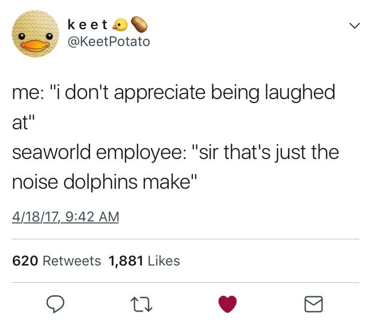 """Text - keet o @KeetPotato me: """"i don't appreciate being laughed at"""" seaworld employee: """"sir that's just the noise dolphins make"""" 4/18/17, 9:42 AM 620 Retweets 1,881 Likes"""