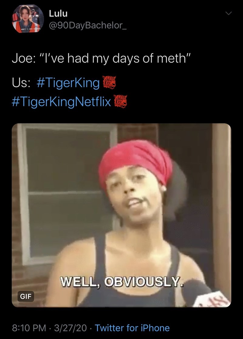 """Photo caption - Lulu @90DayBachelor_ AT I LOVE G Joe: """"I've had my days of meth"""" Us: #TigerKing #TigerKingNetflix WELL, OBVIOUSLY. GIF 8:10 PM · 3/27/20 · Twitter for iPhone"""