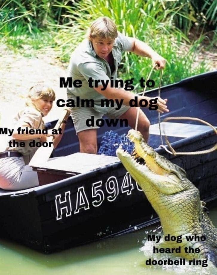 Water transportation - Me trying to 'calm my dog down My friend at the door HA594 My dog who heard the doorbell ring