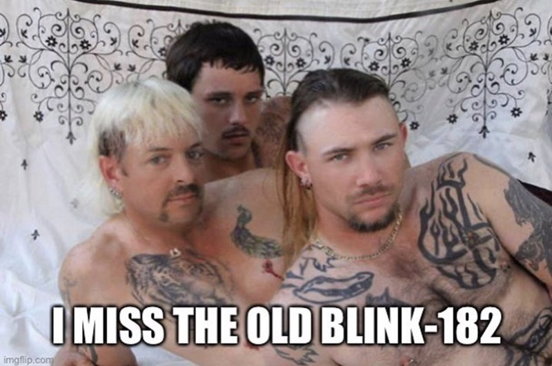 Hair - I MISS THE OLD BLINK-182 imgflip.com