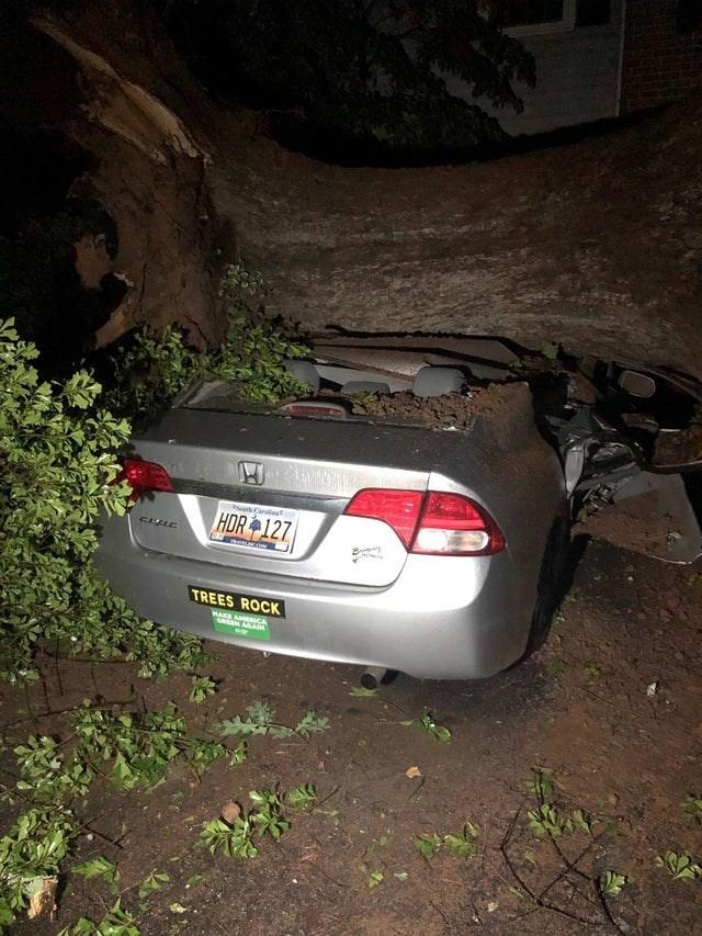 Car - HDR 127 RetAcON TREES ROCK HAKE AHERCA EN AGARM