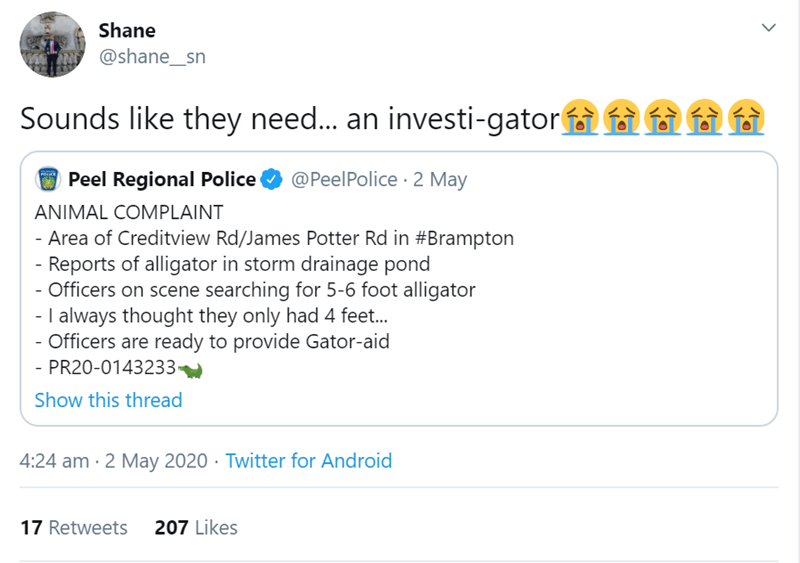 Text - Shane @shane_sn Sounds like they need... an investi-gator i G Peel Regional Police @PeelPolice · 2 May ANIMAL COMPLAINT - Area of Creditview Rd/James Potter Rd in #Brampton Reports of alligator in storm drainage pond - Officers on scene searching for 5-6 foot alligator - I always thought they only had 4 feet.. - Officers are ready to provide Gator-aid - PR20-0143233 Show this thread 4:24 am · 2 May 2020 · Twitter for Android 17 Retweets 207 Likes