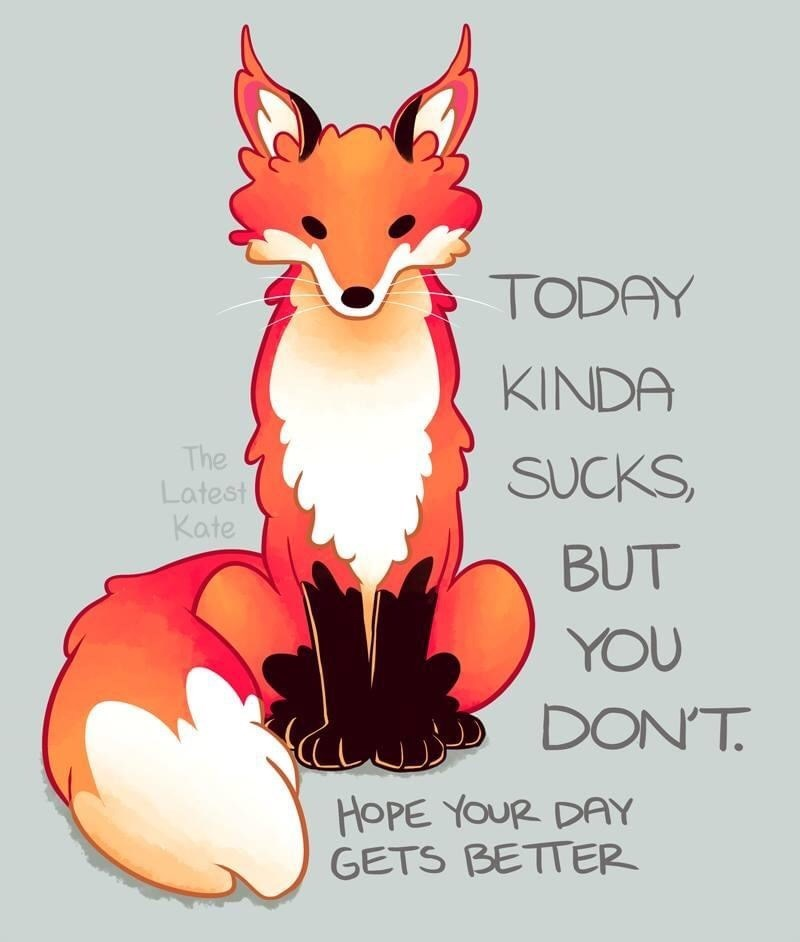 Red fox - TODAY KINDA The Latest Kate SUCKS, BUT YOU DON'T. HOPE YOUR DAY GETS BETTER