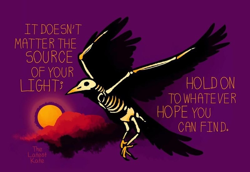 Bird - IT DOESN'T MATTER THE SOURCE OF YOUR LIGHTS HOLD ON TO WHATEVER HOPE YOU CAN FIND. The Latest Kate