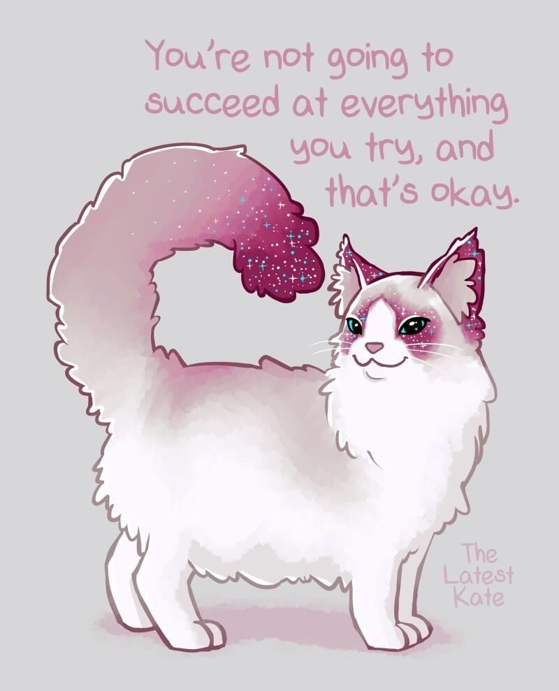 Cat - You're not going to succeed at everything you try, and that's okay. The Latest Kate