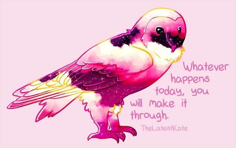 Text - Bird - Whatever happens today, you will make it through. TheLatestKate