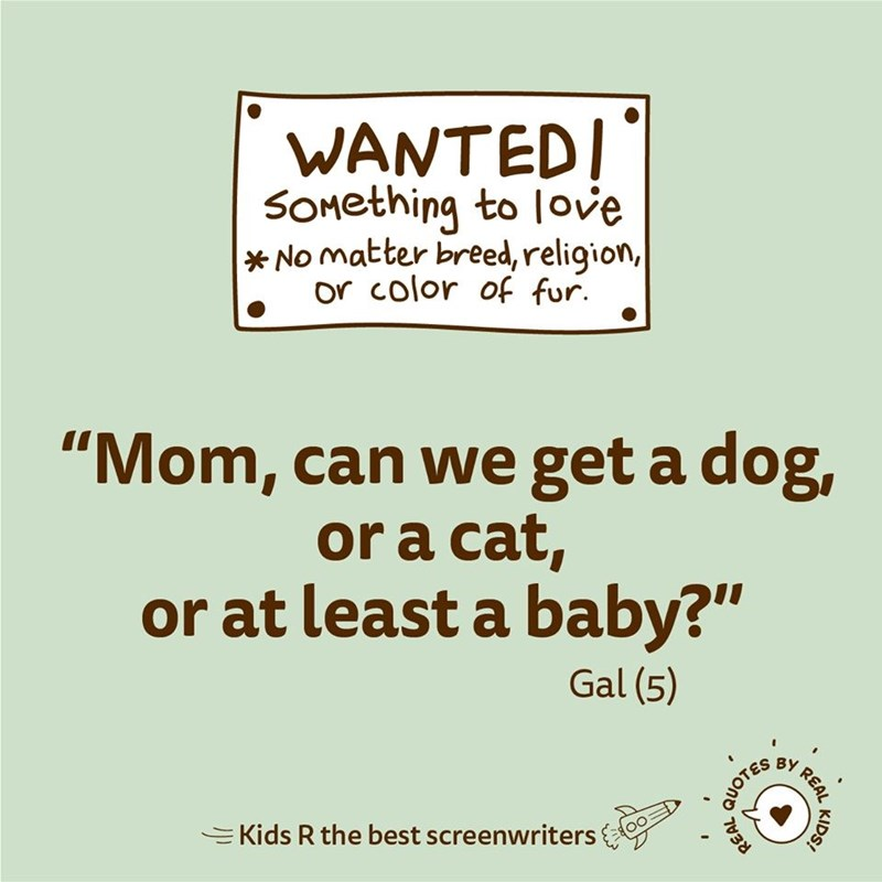 "Text - WANTEDI SOmething to love * No matter breed, religion, or color of fur. ""Mom, can we get a dog, or a cat, or at least a baby?"" Gal (5) I REAL QUOTES EKids R the best screenwriters REAL KIDS!"