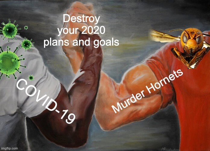 Font - Destroy your 2020 plans and goals COVID-19 Murder Hornets imgfip.com