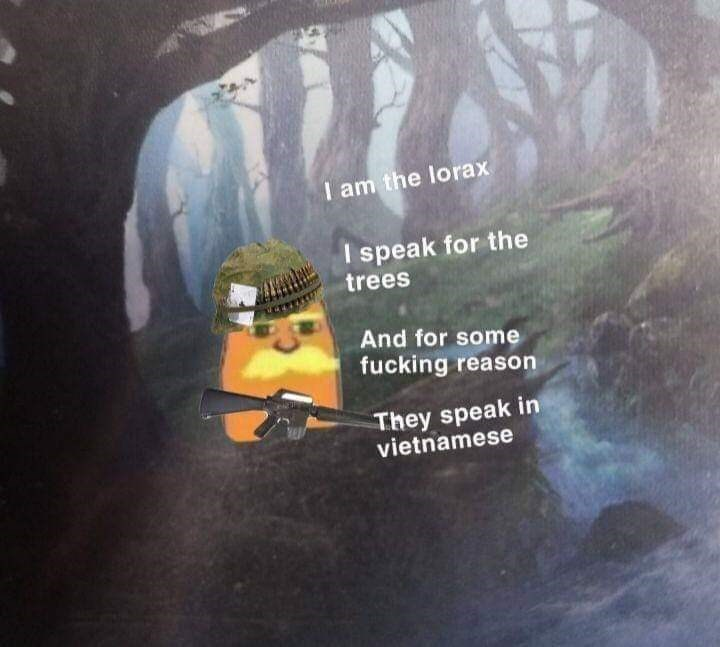 Text - I am the lorax I speak for the trees And for some fucking reason They speak in vietnamese