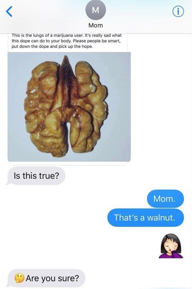 Brain - Mom This is the lungs of a marijuana user. It's really sad what this dope can do to your body. Please people be smart, put down the dope and pick up the hope. Is this true? Mom. That's a walnut. Are you sure?