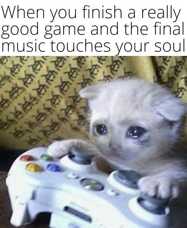 Cat - When you finish a really good game and the final music touches your soul