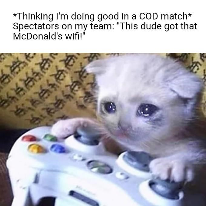 "Cat - *Thinking I'm doing good in a COD match* Spectators on my team: ""This dude got that McDonald's wifi!"" २२ि३ ज"