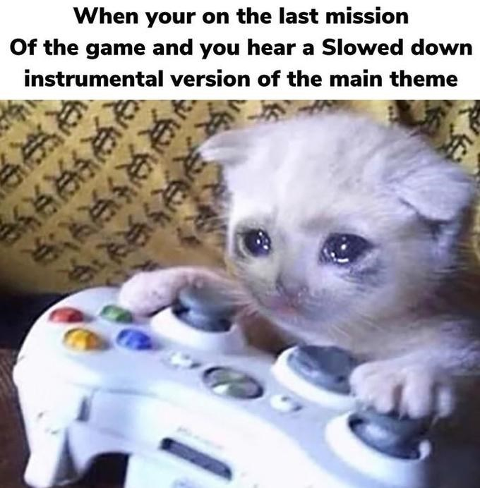 Cat - When your on the last mission Of the game and you hear a Slowed down instrumental version of the main theme