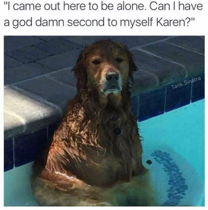 """Dog - """"I came out here to be alone. CanI have a god damn second to myself Karen?"""" Tank.Sinatra"""