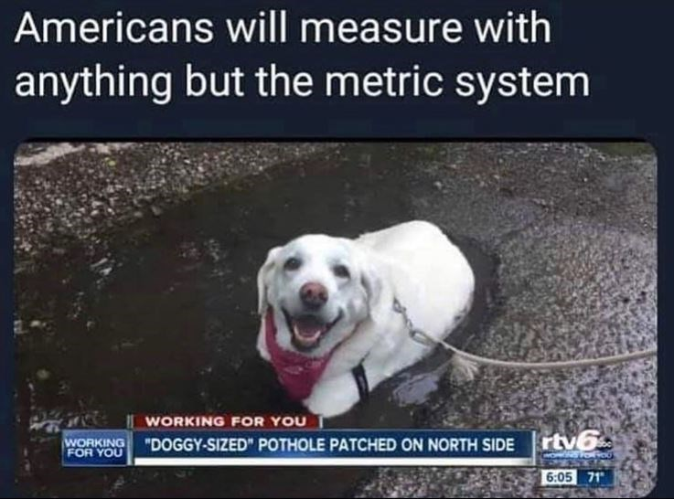 """Dog breed - Americans will measure with anything but the metric system WORKING FOR YOU """"DOGGY-SIZED"""" POTHOLE PATCHED ON NORTH SIDE rtv6 WORKING FOR YOU 6:05 71"""