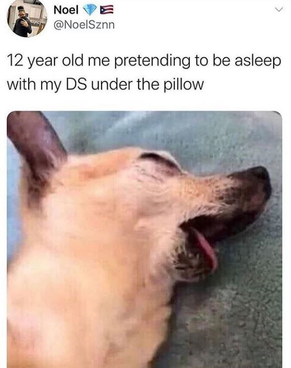 Canidae - Noel @NoelSznn 12 year old me pretending to be asleep with my DS under the pillow
