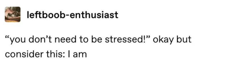 """Text - leftboob-enthusiast """"you don't need to be stressed!"""" okay but consider this:I am"""