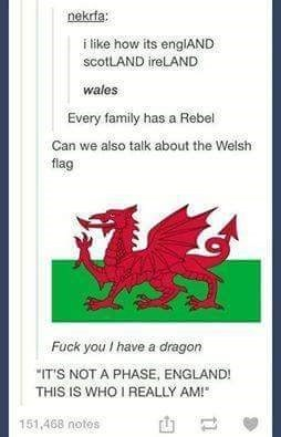 "Text - nekrfa: i like how its englAND scotLAND ireLAND wales Every family has a Rebel Can we also talk about the Welsh flag Fuck you I have a dragon ""IT'S NOT A PHASE, ENGLAND! THIS IS WHO I REALLY AM!"" 151,468 notos"