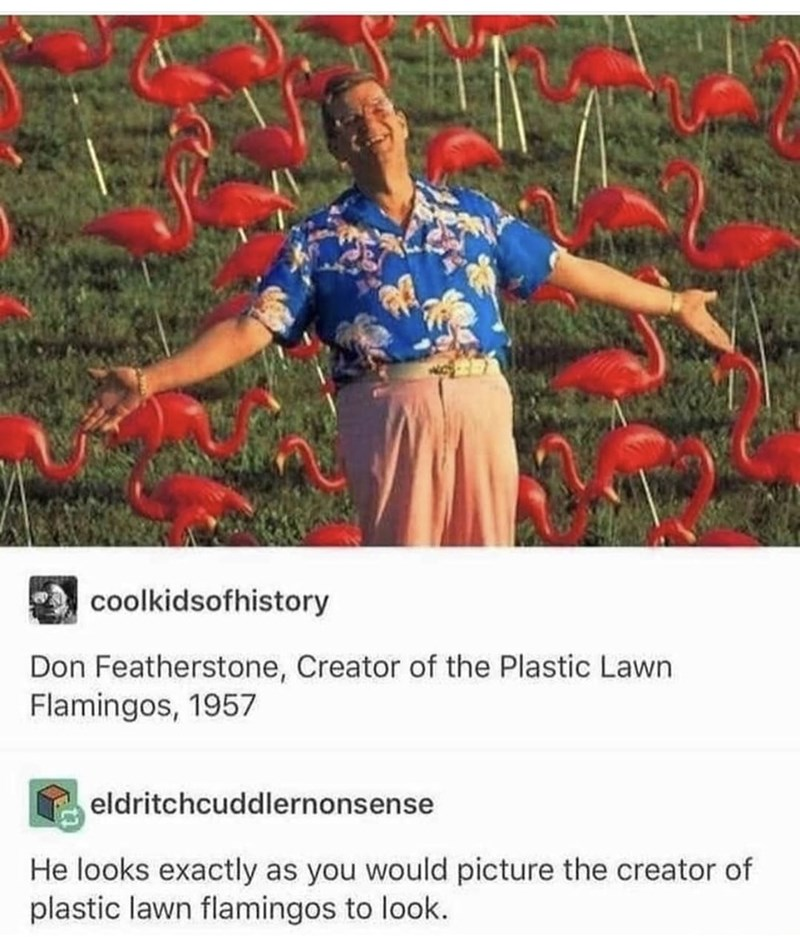 Plant - a coolkidsofhistory Don Featherstone, Creator of the Plastic Lawn Flamingos, 1957 eldritchcuddlernonsense He looks exactly as you would picture the creator of plastic lawn flamingos to look.