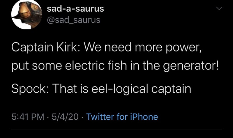 Text - sad-a-saurus @sad_saurus Captain Kirk: We need more power, put some electric fish in the generator! Spock: That is eel-logical captain 5:41 PM · 5/4/20 · Twitter for iPhone