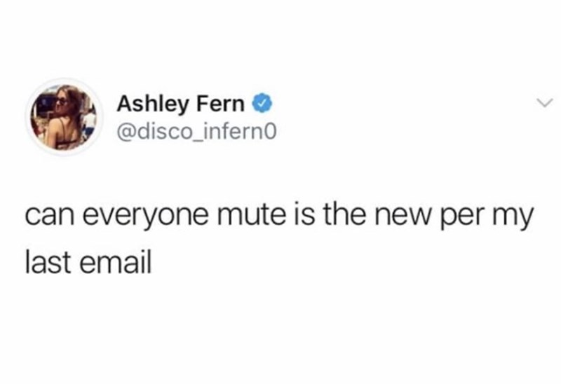 Text - Ashley Fern O @disco_inferno can everyone mute is the new per my last email